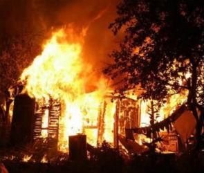 В МЧС назвали две основные версии причин пожара в селе Алферовка под Воронежем