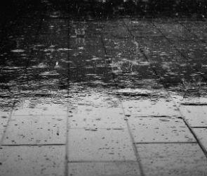 В Воронеже всю неделю будет тепло и дождливо