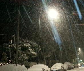 Ночью 25 декабря в Воронеже ожидаются сильный, с порывами, ветер и мокрый снег