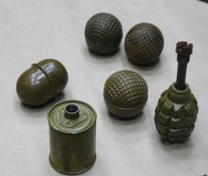 Житель Липецкой области арестован за хранение оружия и боеприпасов (ФОТО)