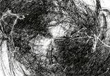 Выставка «Абсолютная актуальность» пройдет в Воронеже с 23 по 31 января