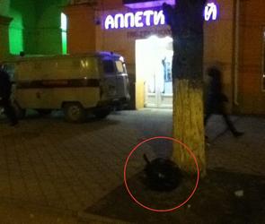 В Левобережном районе Воронежа на остановке скончался мужчина (ФОТО)