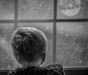 Перед Новым годом в Воронеже пойдет снег