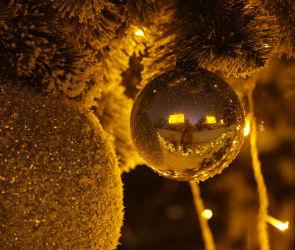 В новогоднюю ночь в Воронеже будет идти снег