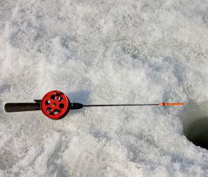 В Воронеже два рыбака провалились под лед водохранилища