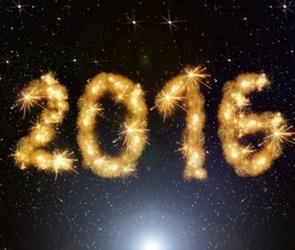 Топ самых добрых новостей в Воронежской области за 2015 год (ФОТО, ВИДЕО)