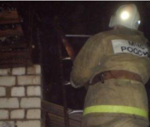 Масштабный пожар на турбазе «Лесовичок» тушили 15 спасателей