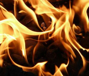 С 1 по 4 января в Воронежской области произошло 18 пожаров: погиб один человек
