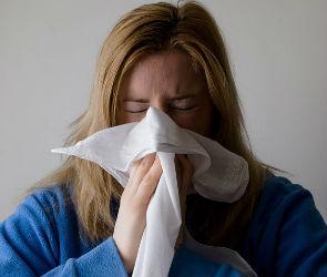 В конце января в Воронеже ожидается вспышка гриппа