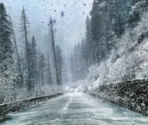 В Воронеже ледяной дождь покрыл автомобили сантиметровым слоем льда (ВИДЕО)