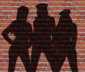 МВД опровергло информацию об изнасиловании младшего лейтенанта страпоном