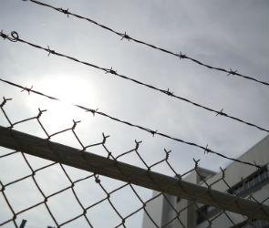 6 лет тюрьмы может получить житель Рамони за изготовление взрывного устройства
