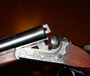 Браконьер из Воронежской области стрелял в лис из обреза