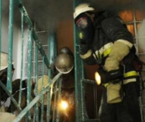В Воронеже на крупном пожаре в Левобережном районе пострадали люди (ФОТО)