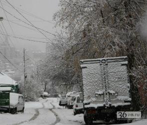 Снегопад в Воронеже не прекратится до конца недели