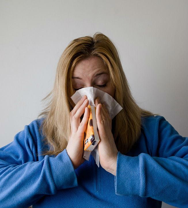 В Воронеж в конце января придет свиной грипп