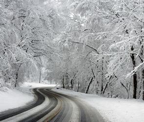 Дорожники предупреждают автолюбителей о снегопаде и метели в Воронежской области