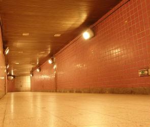 В Воронеже в подземном переходе у Цирка женщину ограбила банда цыган