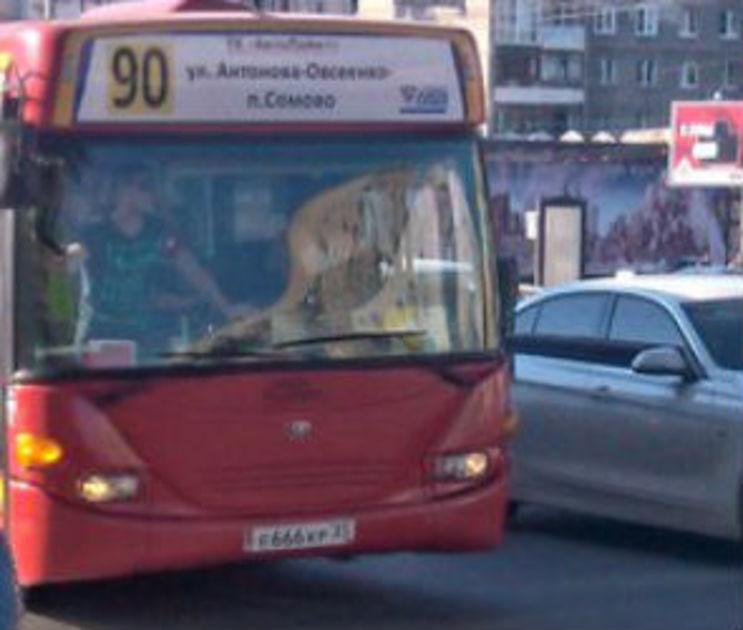 50 хулиганов за 1 миллион рублей разгромили автобазу на Антонова-Овсеенко