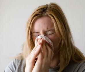 Воронеж лидирует в России по количеству заболевших гриппом (ИНФОГРАФИКА)