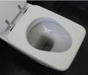 Воронежская УК, перекрывшая канализацию в 60 квартирах, не снимает ограничение