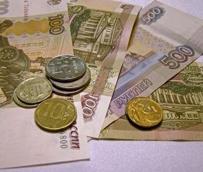 Средняя зарплата в конце 2015 года в Воронежской области выросла на 4,8%