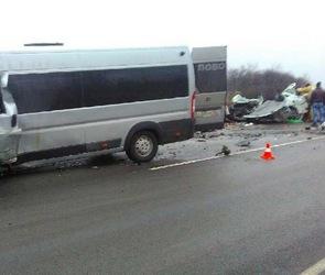 ДТП с тремя погибшими в Воронежской области спровоцировал водитель легковушки