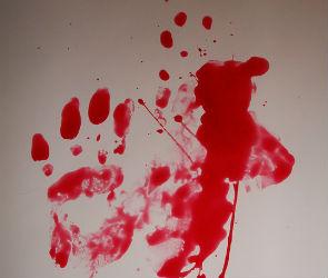 В Воронеже разыскивают убийцу, проломившего женщине голову