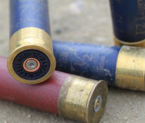 На улице Миронова в Воронеже застрелили 36-летнего мужчину