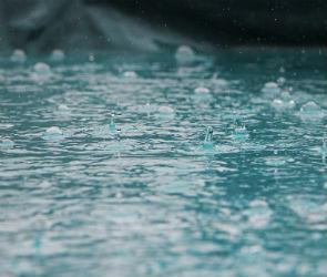 Праздничные выходные в Воронеже будут теплыми, но дождливыми