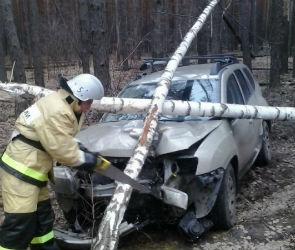В Воронеже внедорожник врезался в дерево: пострадал один человек (ФОТО)