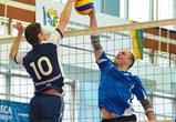 Прошли первые матчи весеннего сезона «Лиги Чемпионов Бизнеса» по волейболу