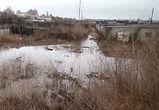 Гаражи воронежцев затопило фекалиями из невысыхающей лужи (ВИДЕО)