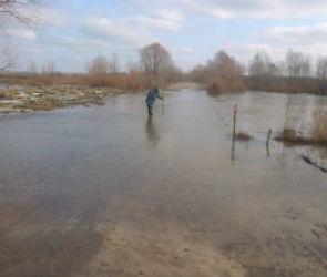В Воронежской области еще один мост ушел под воду