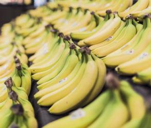 Воронеж присоединился к мировому движению по спасению «ненужной» еды