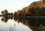 Воронежская область получит 59 млн рублей на охрану водных объектов