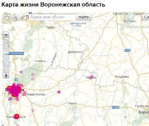 Самые опасные участки воронежских дорог появились на интерактивной карте
