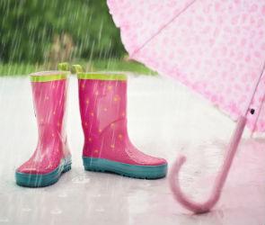 Ближайшие выходные в Воронеже будут пасмурными и дождливыми