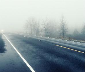 МЧС предупреждает воронежцев о дожде, тумане и сильном ветре