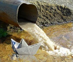 «Виновность денег» и борьба с водорослями - отчет и планы депутатов Госдумы