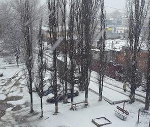 МЧС: Ветреная и холодная погода продержится в Воронеже еще сутки (ФОТО)