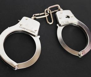 Полиция арестовала воронежца за кражу драгоценностей у студентки