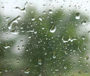 Воронежцев в ближайшие дни ждет теплая и дождливая погода