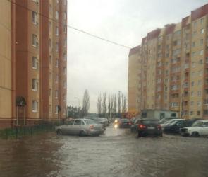 В Воронеже за ночь выпала почти половина месячной нормы осадков