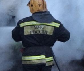 В Воронеже на улице Ворошилова загорелся автобус