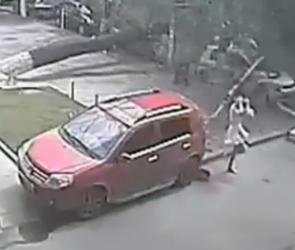 Девушка чудом уцелела после падения дерева у кинотеатра «Юность»