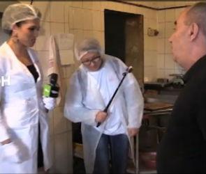 В воронежском выпуске «Ревизорро» опять покажут тараканов (ВИДЕО)