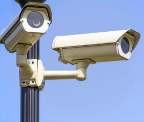 В воронежских парках будет вестись круглосуточное видеонаблюдение