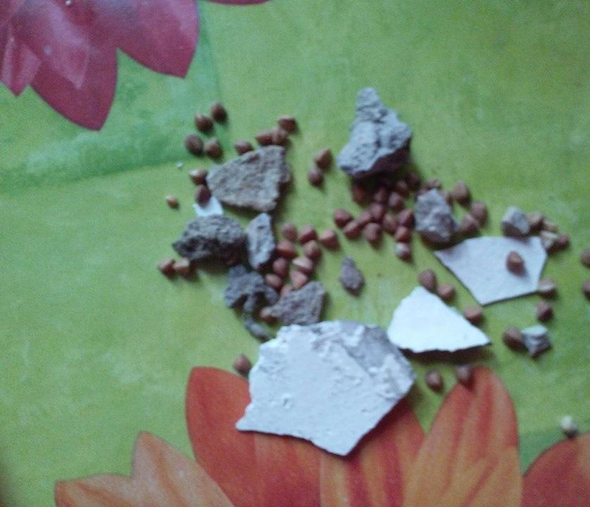 «Галерея Чижова» прокомментировала ситуацию с испорченным подарком ветерану