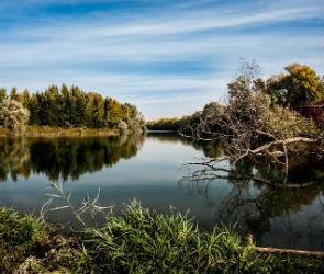 В реке под Рамонью утонул мужчина